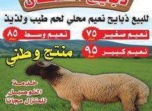 للبيع ذبايح طيبه وسمينه 50700760