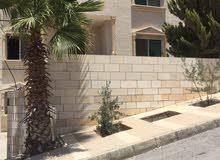 Best price 100 sqm apartment for rent in AmmanSafut