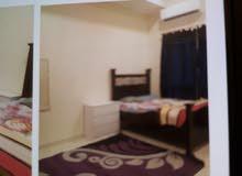 غرفة للايجار شامل مفروش - مدينة عيسى - بجوار رامز