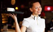 نادلات من الجنسية المغربية خبرة طويلة في أرقى المطاعم والمقاهي