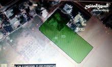 ارض للبيع في الزيتونة قضاء بلعما 5500 للدونم