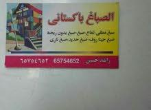 اصباغ باكستانى  65754652