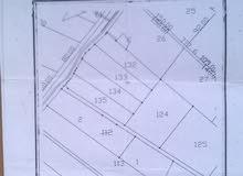 ارض زراعية للبيع بمنطقة دحل / المدور على شارع رئيسي واجة 30 متر لكل قطعة