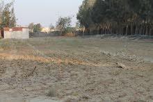 مزرعة للبيع على الطريق الصحراوى المباشر بعد بوابات العالمين بي 5 كيلو