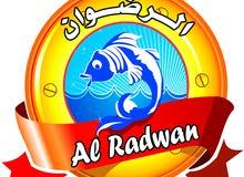 مطلوب عمال إنتاج لشركة الرضوان لتبريد وتجميد الأسماك ببورسعيد