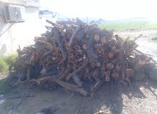قص اشجار  وبيع جميع انواع الحطب