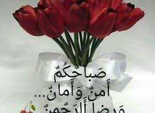 محتاج فيزا سائق بوكلين مقيم في السودان تواصل علي الرقم 0578621847