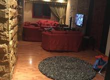 امتلك الان شقة دوبلكس على شارع جمال عبد الناصر