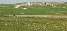 ارض قريبه على طريق المفرق رحاب