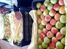 تفاح سوري للبيع