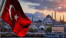 خدمات التاشيرة الالكترونية التركية C1