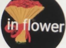 مطلووب منسق ورد  someone who knows about flowers and decorating flowers