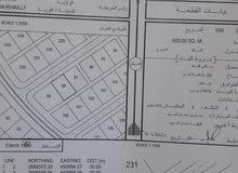 صحم منطقة مخيليف قريب بيوت التعويض
