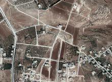 ارض 790م في ابو العساكر ناعور قرب قصر القطري بسعر 75الف نهائي صافي