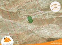 أراضي استثمارية في (جنوب عمان) الحمام الشرقي بسعر مغري