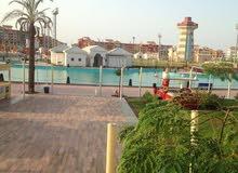 محل بشرم الشيخ