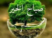 شاب علي درايه كامله بمناطق الكويت مستعد لتوصيل مدرسين من الساعه 2ظهرا