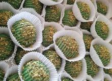 حلويات معمل ام فاطمه