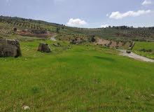 ارض للبيع بأجمل مناطق الصبيحي ( سطو الظهرة )