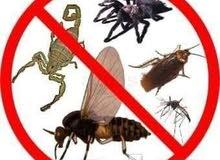 العالمية لمكافحة الحشرات بجدة