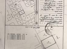 للبيع ارض سكنية بولاية شناص- قرية بليدة