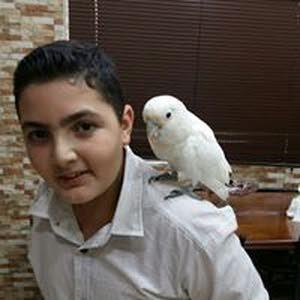 القدومي عبد الرحمن مجدي