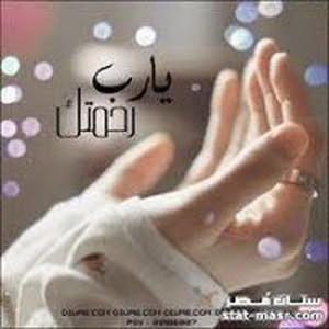 Wael Alshinawy
