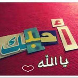 Doaa Abd Elbaset