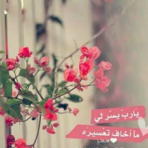 Alaa Ahm Ahm