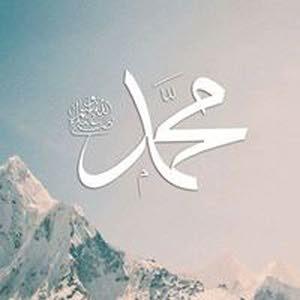 محمد ابن الاصول