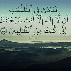 Essam  khalf Mohamed