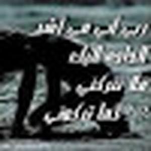 ناصر الشحماني