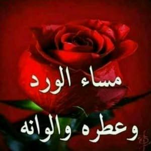 ابو حسن العبابنة