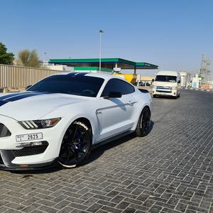 shelby GT350 2016 for sale