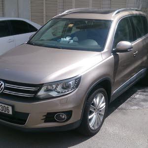 Gasoline Fuel/Power   Volkswagen Tiguan 2013