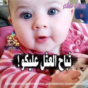 Ashraf m. t.