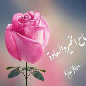 علاء ابوالسعود