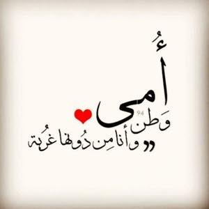 Abdo Mohamed Mohamed