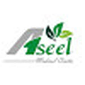Aseel Medical