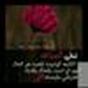 Alshaimaa Abdelbarry