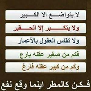عايدمحمد المغير