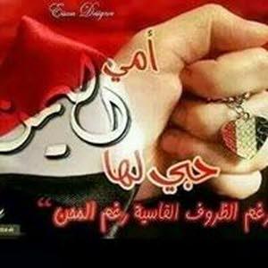 اسماعيل عبدالحافظ الشامي الشامي