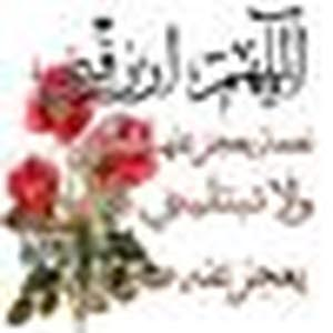 Sanaa Alufi