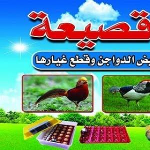 ابناء قصيعة لحضانات بيض الدواجن وقطع غيارها