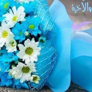 Shoumoukh511 الشموخ