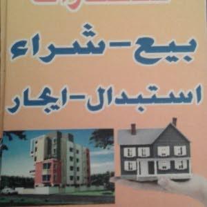 mohamed elshareef