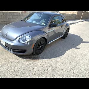 For sale 2013 Grey Beetle