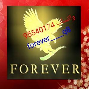 forever ____q8