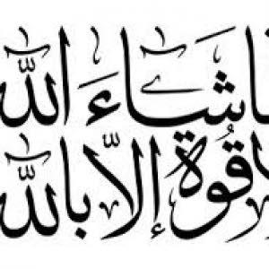 محمد راشد