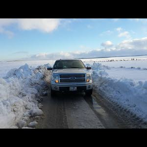 Ford F-150 2009 For Sale